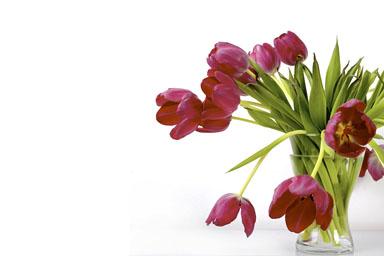 Какие цветы подарить на юбилей или
